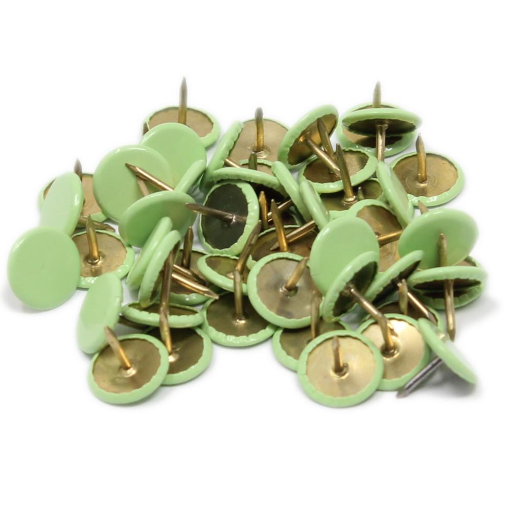 50 Heftzwecken in Pastellgrün