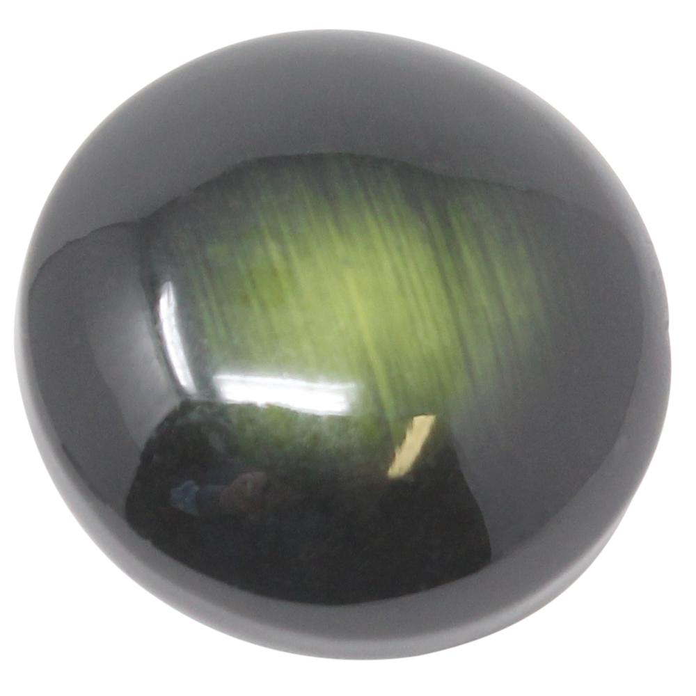 4 Augen Ösenknöpfe - 25mm Ø - 10mm Höhe - Grün