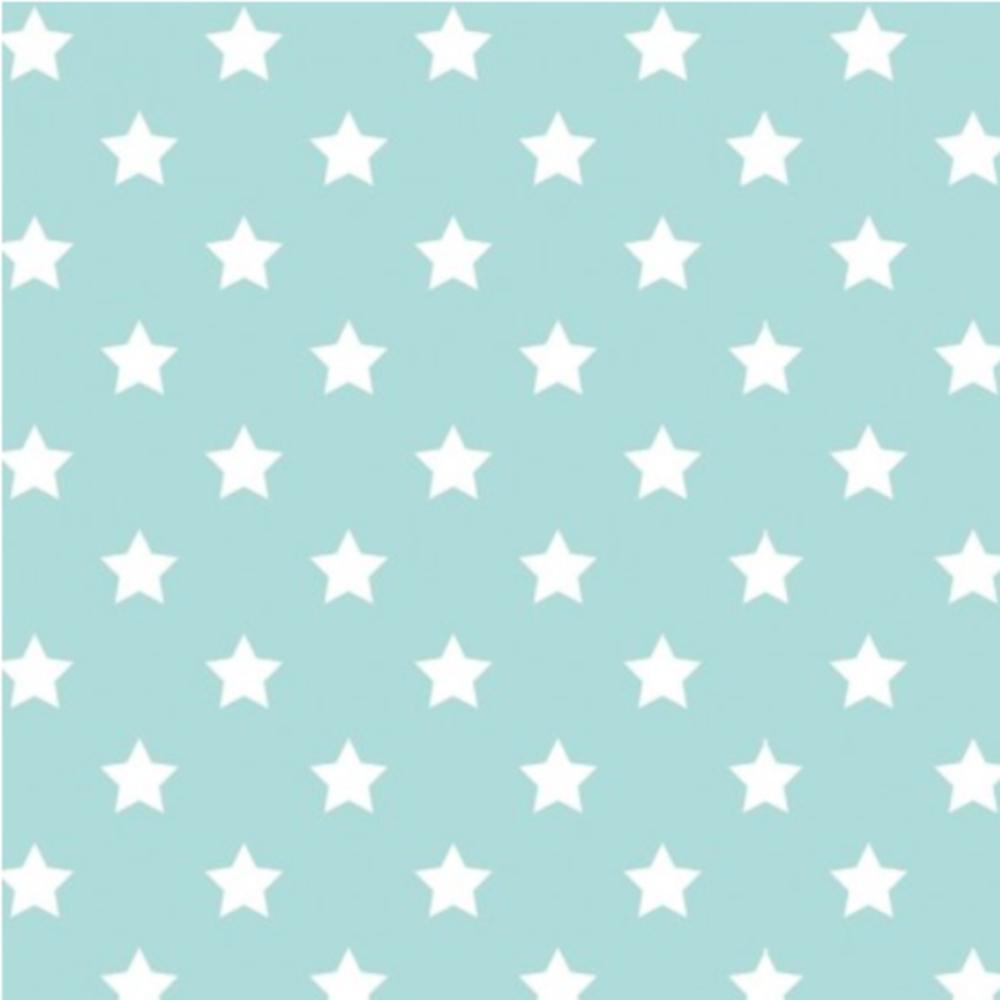 1m | Jersey Stoff 150cm in hellmint mit weißen Sternen